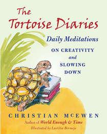 The Tortoise Diaries